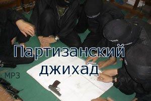 1389067729_partizan-jihodi-300ru